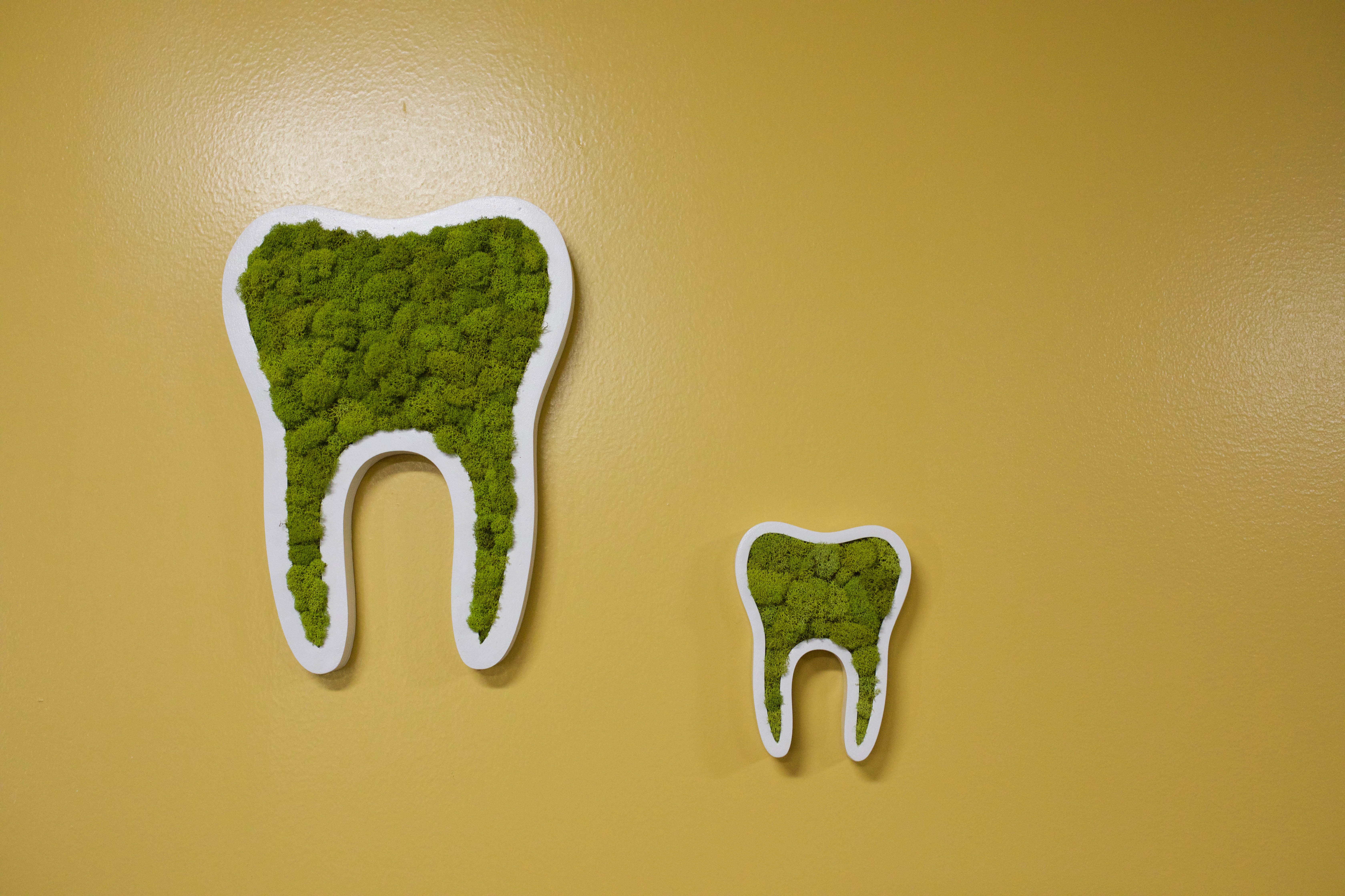 Dr. Jenicke loves tooth art!